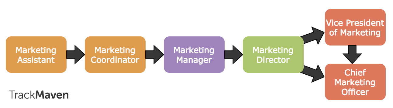 Marketing careers guide -- traditional marketing career path.