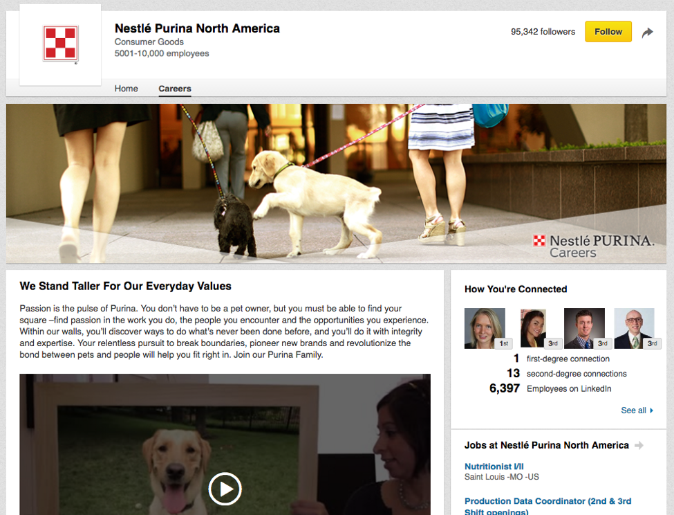 nestle purina guide to linkedin for marketers